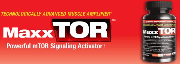 Mediator Mtor Max Muscle maxxTOR 105 kps