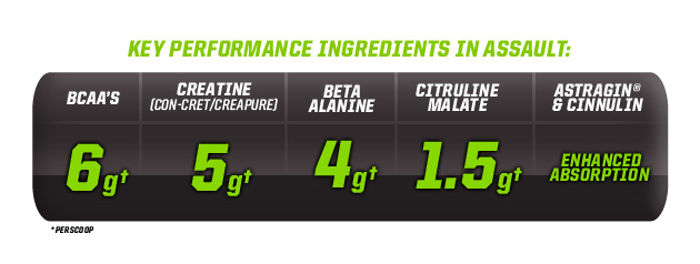 Muscle Pharm Assault key Ingredients zlozenie